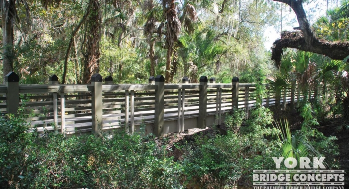 Alafia Creek Trail