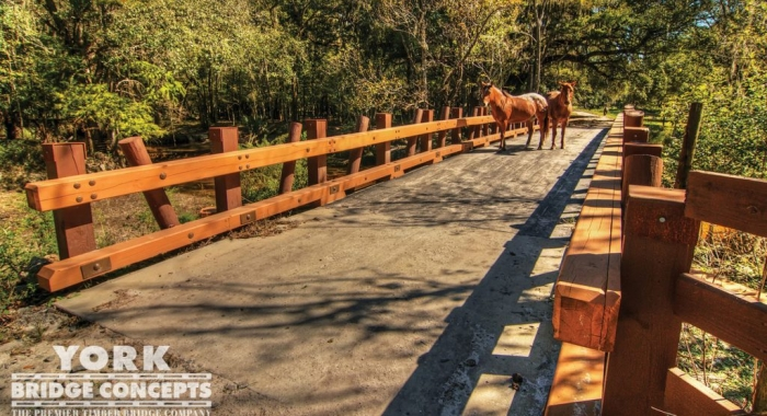 Trail-Bridges