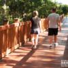 Tunica Biloxi Nature Trail